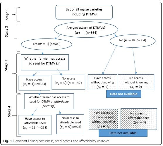 Heterogeneous seed access and information exposure: implications for the adoption of drought-tolerant maize varieties in Uganda